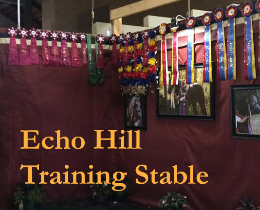 Echo Hill Training Stable