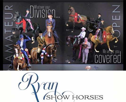 Ryan Show Horses