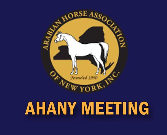 AHANY Meeting