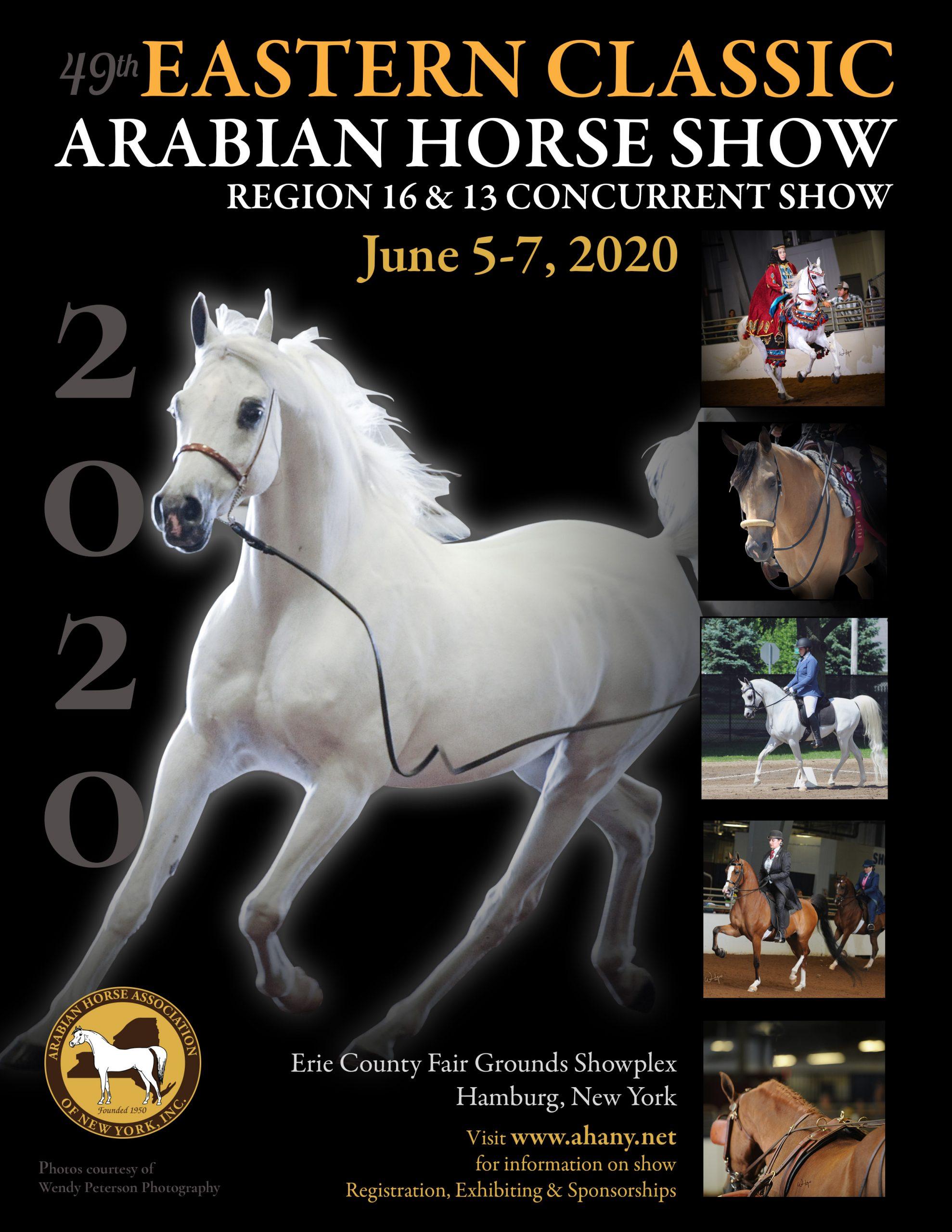 region 12 arabian horse show 2020